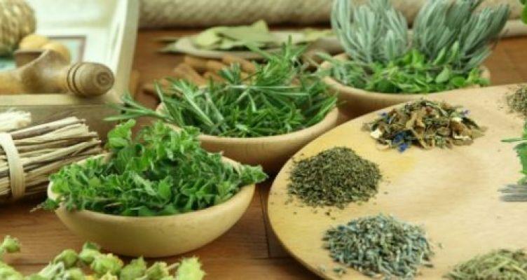 Το ελληνικό βότανο που θεραπεύει από τα προβλήματα όρασης