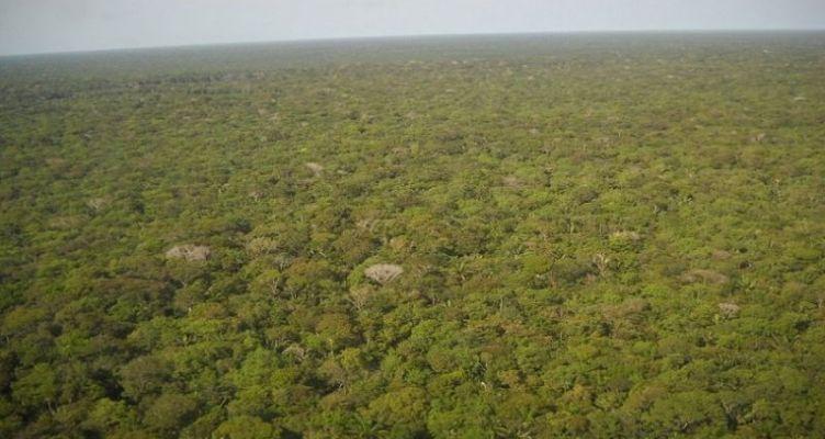 Μελέτη της NASA: Ο άνθρωπος «στεγνώνει» τον Αμαζόνιο