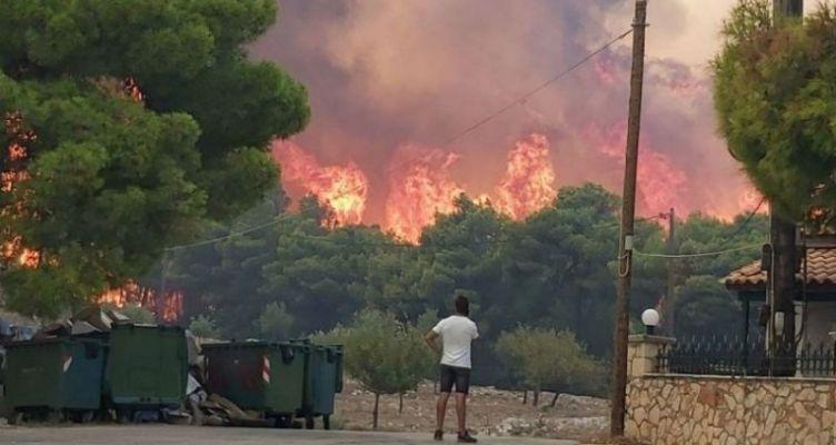 Ο τραγικός απολογισμός από τις 83 πυρκαγιές στην Ζάκυνθο