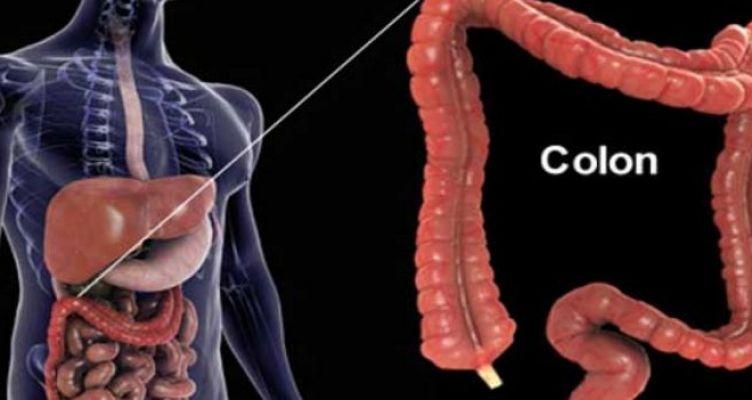 Ρώσος βιολόγος: «Ο θάνατος του ανθρώπου αρχίζει από το στομάχι» (Βίντεο)