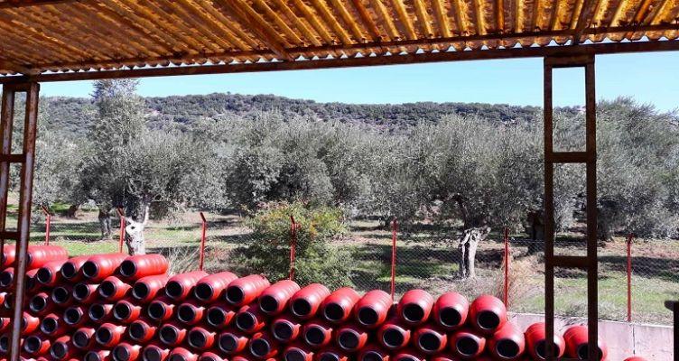 Οριακή άνοδος στις ελληνικές εξαγωγές στο 11μηνο