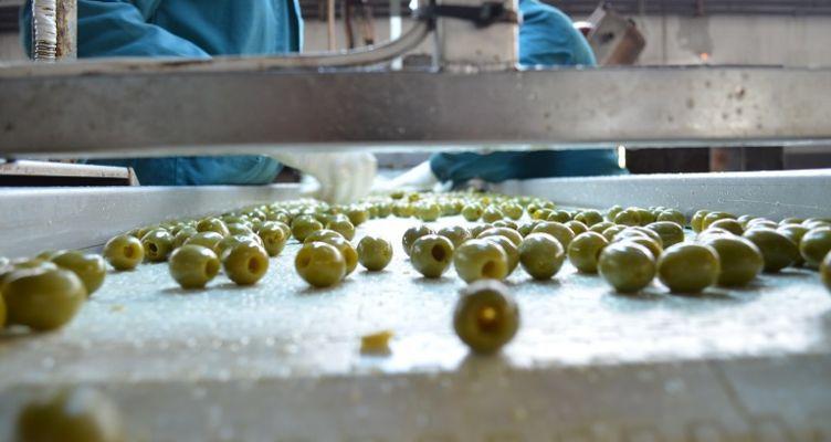 Νέα αύξηση 40 εκ. ευρώ στη μεταποίηση γεωργικών προϊόντων