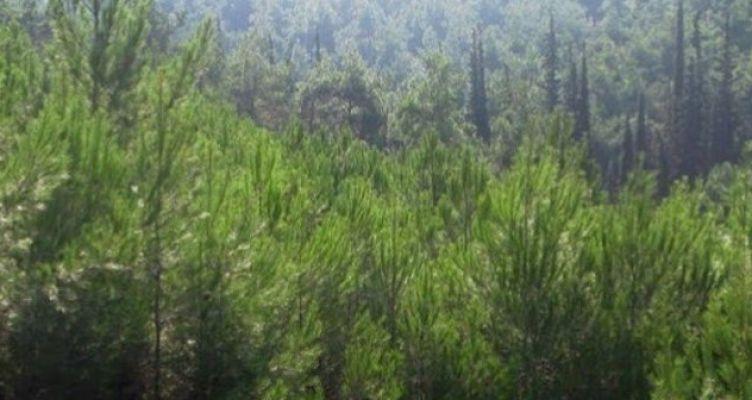 Αιτωλοακαρνανία: Η κλιματική αλλαγή θα επηρεάσει γεωργία, δάση, ποτάμια και υδάτινους πόρους