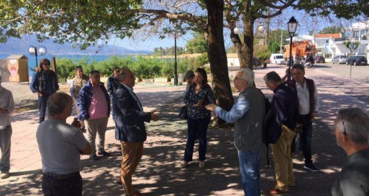 Ναύπακτος: Πολύ μεγαλύτερος ο κίνδυνος για τα πλατάνια του Γριμπόβου