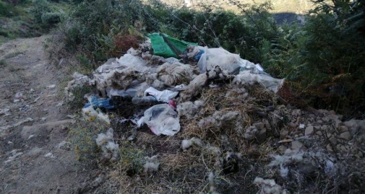 Σε χωματερή μετατράπηκε συγκεκριμένο σημείο του Α. Κερασόβου