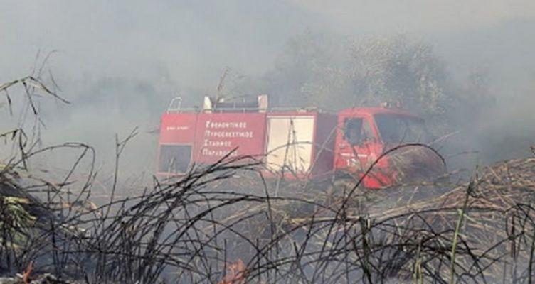 Καινούργιο Αγρινίου: Κάηκαν 10 στρέμματα – Υπό πλήρη έλεγχος οι φωτιές