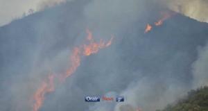 Πυρκαγιά στην Παλαιομάνινα Αιτωλοακαρνανίας