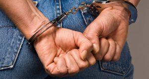 Συνελήφθησαν δυο ημεδαποί στην Ηλεία για καλλιέργεια δενδρυλλίων κάνναβης