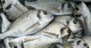 Οινιάδες: Πήγαν να κλέψουν 600 κιλά ψάρια και πιάστηκαν στα…