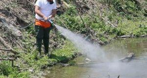 Ψεκασμοί εκνέφωσης για τα κουνούπια σε Μετόχι και Μανωλάδα στις…