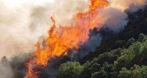 Πυρκαγιά σε δάσος στην Αμαλιάδα, εκκενώνεται το χωριό Ανάληψη