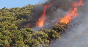 Και νέα πυρκαγιά στην Ζάκυνθο