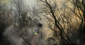 Αναζωπυρώσεις στη Ζάκυνθο, σε ύφεση τα μέτωπα στην Ηλεία (Φωτογραφίες)