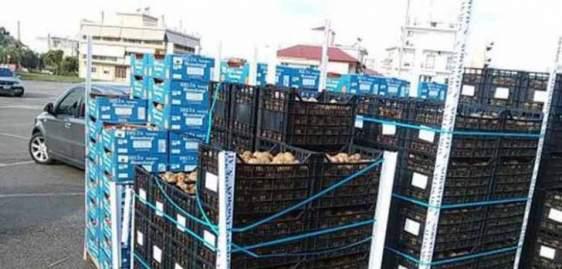 Ο Δήμος Αγρινίου για τη διανομή φρούτων στους δικαιούχους