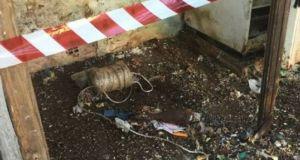 Πρέβεζα: Όλμος μέσα στο σπίτι ρακοσυλλέκτριας – Κινητοποίηση των Αρχών…