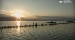 Ντοκιμαντέρ στην ΕΡΤ2 για το «Εθνικό Πάρκο Λιμνοθαλασσών Μεσολογγίου –…