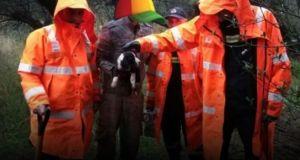 Εθελοντές και Π.Υ. Ναυπάκτου απεγκλώβισαν κουταβάκι από κορμό δέντρου (Φωτό)