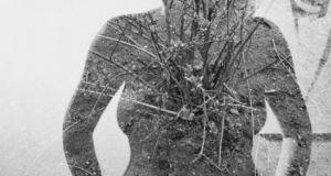 Αγρίνιο: Σενιμάριο-Workshop από την φωτογραφική ομάδα art8