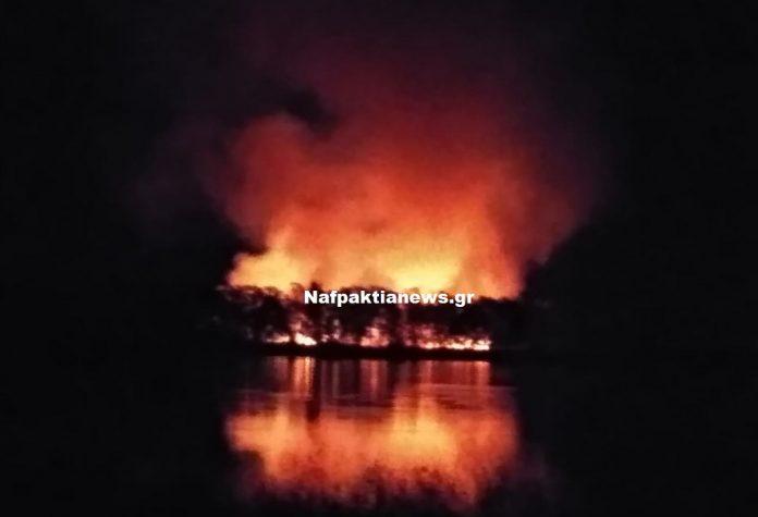 Μεσολόγγι: Πυρκαγιά τα ξημερώματα κοντά στο βιολογικό (Βίντεο)