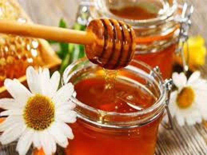 Ετήσια Τακτική Συνέλευση για τον Μελισσοκομικό Σύλλογο Αιτ/νίας