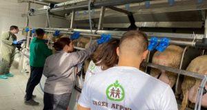 Ένωση Αγρινίου – Feed For Milk: Ξεκίνησε το Ερευνητικό Πρόγραμμα…