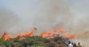 Μεσολόγγι: Έκαψε κλαδιά και έγιναν στάχτη 15 στρέμματα αγροτοδασικής έκτασης
