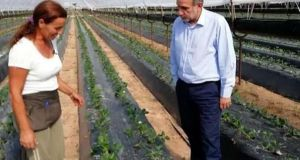 Απ. Κατσιφάρας: Ολοκληρωμένες προτάσεις για τη στήριξη του πρωτογενή τομέα