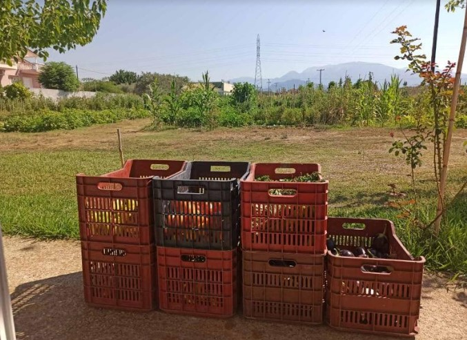 Δήμος Αγρινίου – Δημοτικός Λαχανόκηπος: Διάθεση προϊόντων