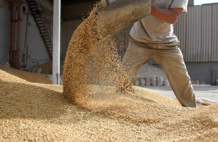 Σε υψηλά επίπεδα οι εξαγωγές αγροδιατροφικών προϊόντων της Ε.Ε., παρά τις προκλήσεις
