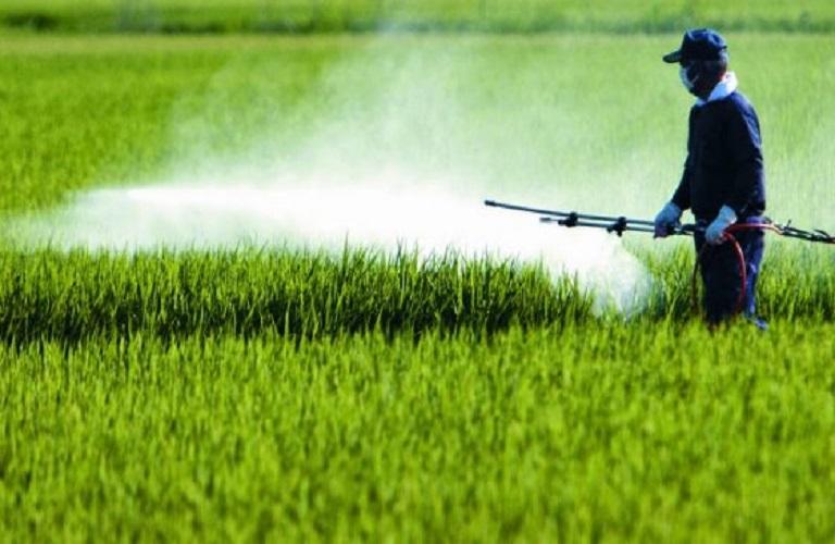 Στήριξη στην πράσινη καινοτομία και τέλος στην τοξική ανακύκλωση