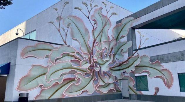 Καλιφόρνια: Ένα λουλούδι γκράφιτι «ανθίζει» στην επιφάνεια έξι τοίχων