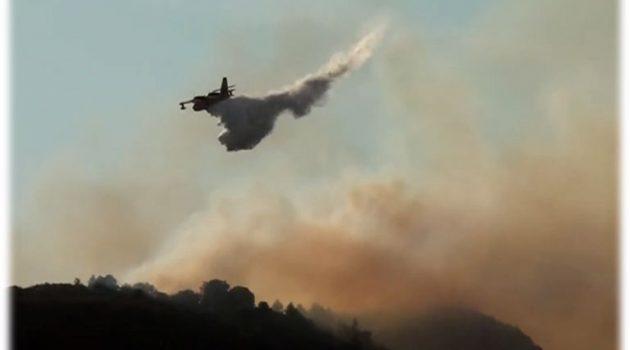 Ολονύχτια μάχη με τις φλόγες στο Παραδείσι Αιτωλοακαρνανίας (Video)