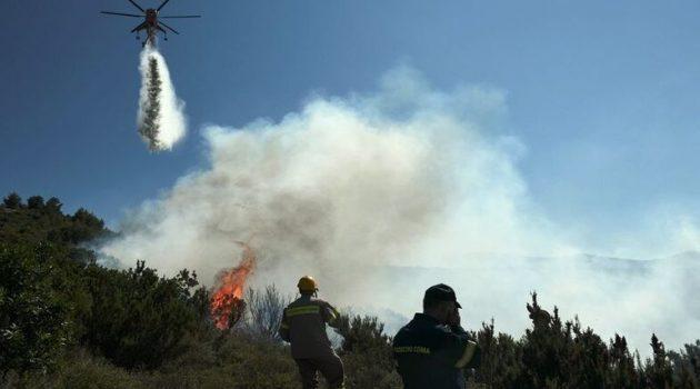 Παλαιομάνινα: Πυρκαγιά κινητοποίησε άνδρες της Πυροσβεστικής Υπηρεσίας
