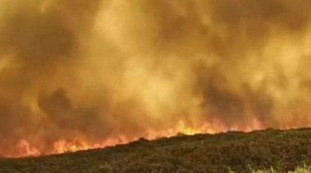 Πυρκαγιά στη Μάνη: Συνεχίζεται για 2η ημέρα η «μάχη» με τις φλόγες