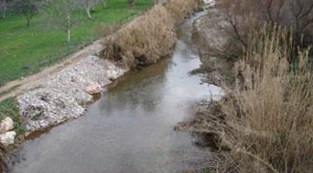 Καταγγελία για νεκρά ψάρια στον ποταμό Πείρο