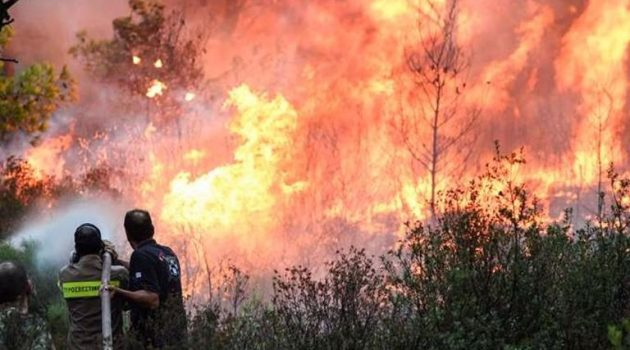 Καινούργιο Αγρινίου: Δύο φωτιές ταυτόχρονα τα μεσάνυχτα κινητοποίησαν την Π.Υ.