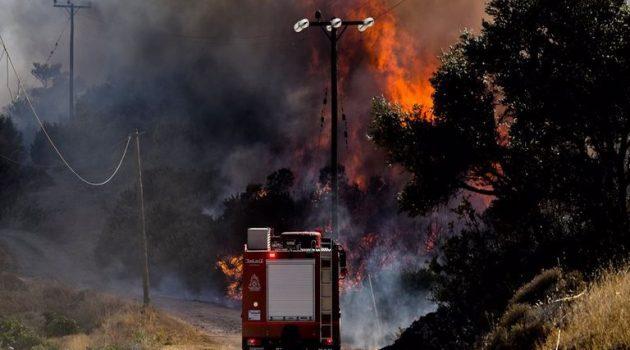 Φωτιά στην Κερατέα: Ερευνάται το ενδεχόμενο εμπρησμού