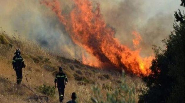 Φωτιά στο Βελούχι – Απειλείται ξενοδοχείο (Video)