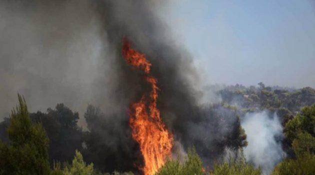 Φωτιά στα Όχθια, έκαψε είκοσι στρέμματα αγροτικών εκτάσεων