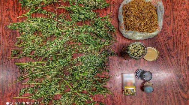 Αγρίνιο: Η ΕΛ.ΑΣ. για τη σύλληψη καλλιεργητή δενδρυλλίων κάνναβης