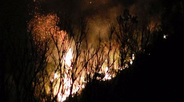 Φωτιά στην Πάτρα – Απειλήθηκαν σπίτια στα Συχαινά