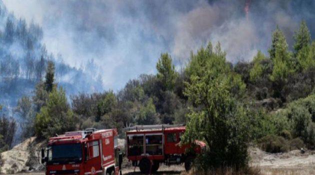 Πυρκαγιά στην Κατούνα