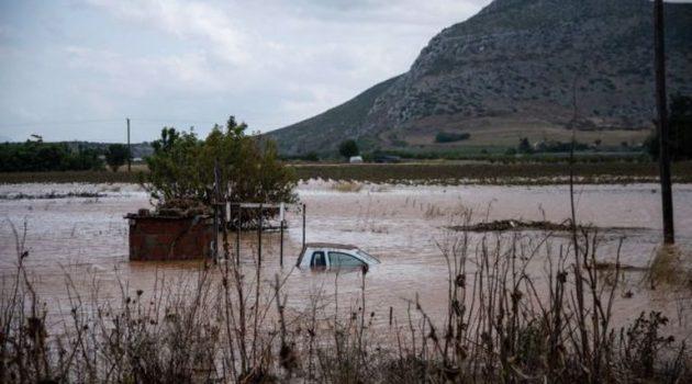 «Ιανός»: Νεκρός εντοπίστηκε ο 62χρονος κτηνοτρόφος στην Καστανιά