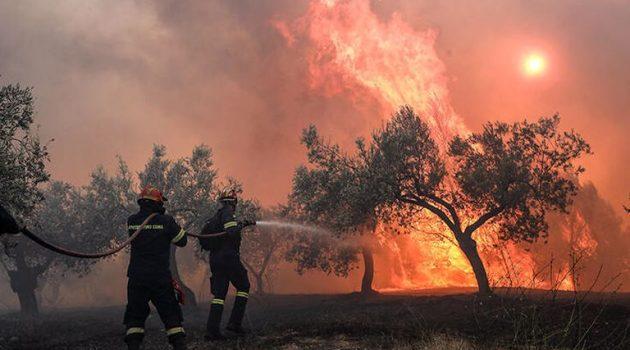 Τρίκορφο: 33 υδροφόρα οχήματα και περισσότεροι από 130 πυροσβέστες και εθελοντές
