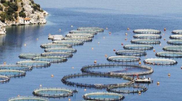 Το Κ.Κ.Ε. για την Περιοχή Ολοκληρωμένης Ανάπτυξης Υδατοκαλλιεργειών Αιτωλ/νίας