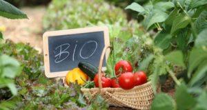 Ένωση Αγρινίου: 2η εκκαθάριση πληρωμής στις βιολογικές καλλιέργειες