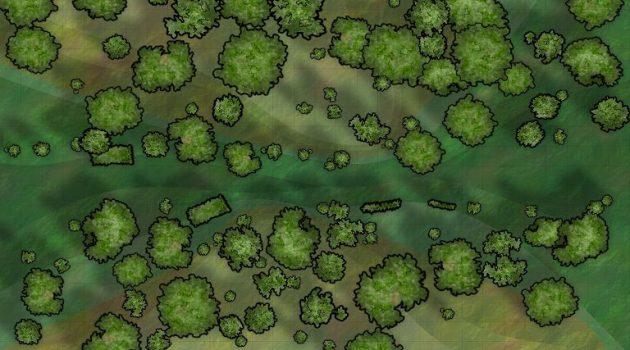 Παρέμβαση υπέρ του νόμου για τους δασικούς χάρτες