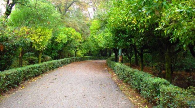 Δημοτικό Πάρκο Αγρινίου: Ροτβάιλερ επιτέθηκε σε 4χρονο κοριτσάκι