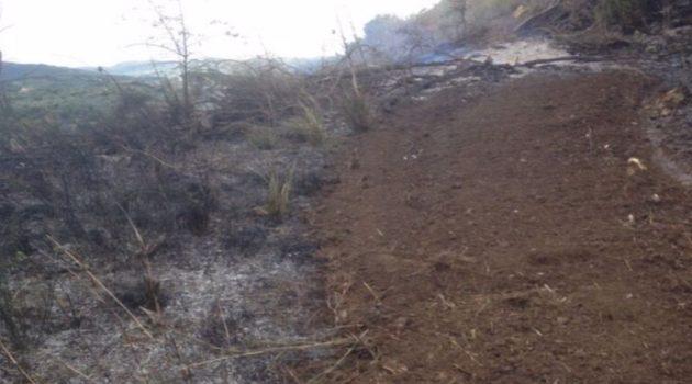 Αμφιλοχία: Κινητοποίηση της Πυροσβεστικής για φωτιά (Photos)