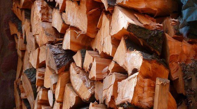 Φωκίδα: 49χρονος πήγε να κόψει ξύλα και βρέθηκε νεκρός